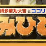 明日8月24日(月)テレビ朝日「かみひとえ」にゲスト出演します!